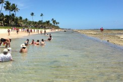 img-praia-do-marulhos-resort-porto-de-galinhas-alugam-se-flats-por-temporada